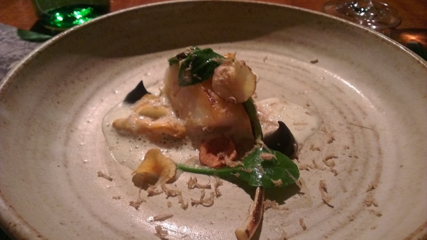 Brill with truffle puree
