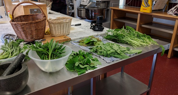 Foraged greens in the kitchen
